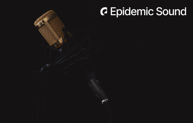 Epidemic Sound Review 3