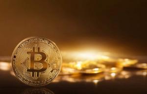 Free Bitcoin 5