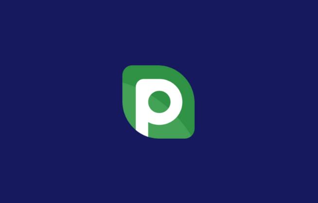 P2PB2B Referral ID