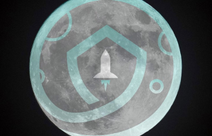 How to Buy SafeMoon 2